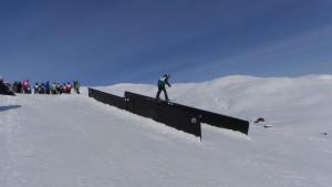 Solid Results for New Zealand Team at Freestyle World Ski Champs