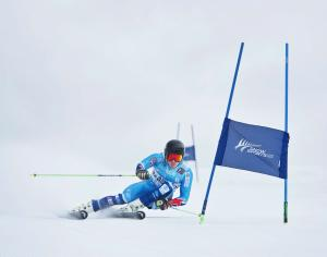 Alpine Sport Committee