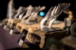 Snow Sports NZ Annual Award Nominees