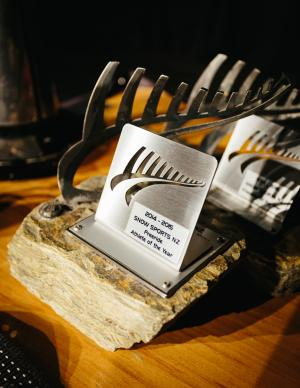 Snow Sports NZ 2016 Annual Awards Nominees Announced